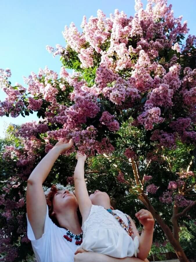 קטיף פרחים