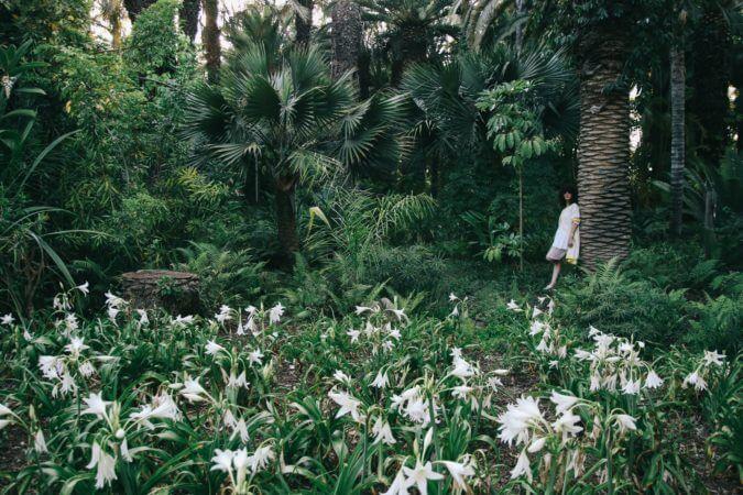 נערה בשדה פרחים