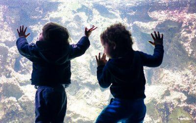 איך לבלות עם הילדים בחופש